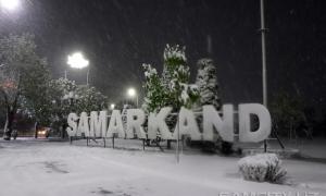 Фото: Снег в апреле в Самарканде